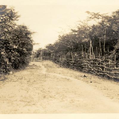 Wooden fence around Suah Koko, Liberia